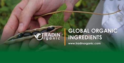 Gerard Versteegh (CEO Tradin Organic) looks beyond pure organic farming
